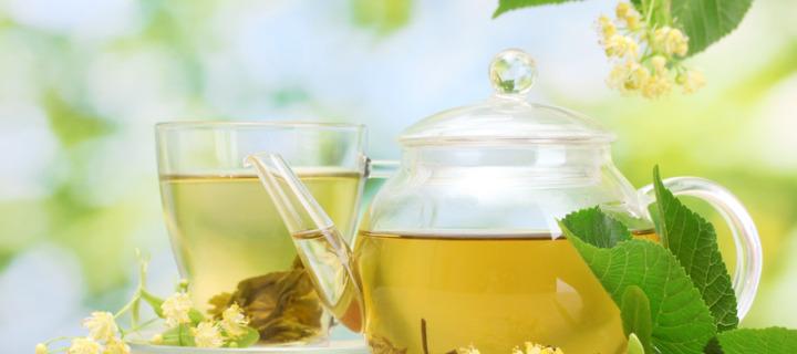 В чем польза белого чая
